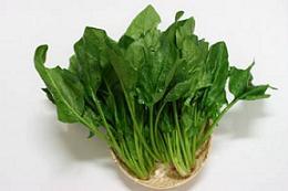 spinech