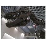 国立科学博物館上野へ行こう!アクセス・駐車場・混雑・料金・レストラン