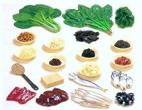 鉄分の多い食材
