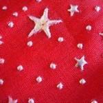 折り紙【星の折り方】動画4種類!クリスマス七夕に2歳~大人