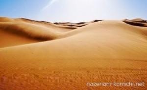 オールインワジェルで砂漠肌がモチモチ肌へ。